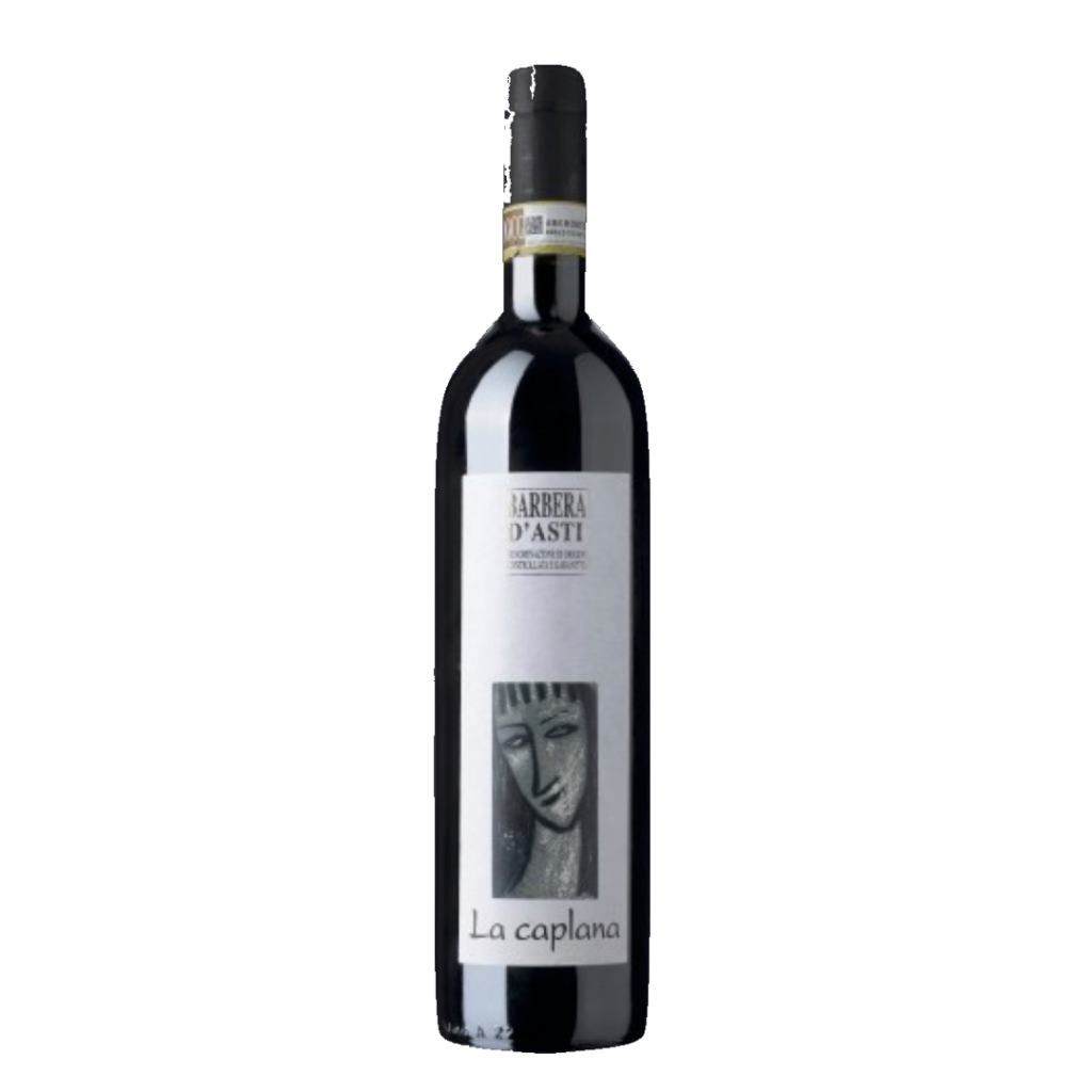 Barbera Wine. Recommended food pairing of rich pasta dishes.